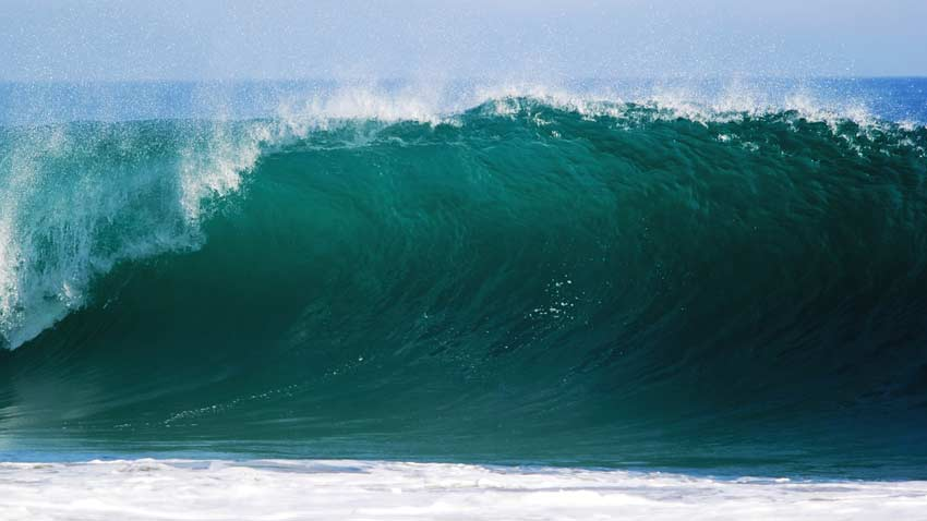 The Little wave Story about Life